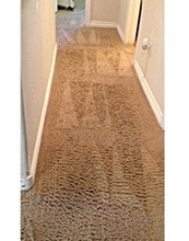 NaturalDry Carpet Cleaning - 2nd place winner before picture