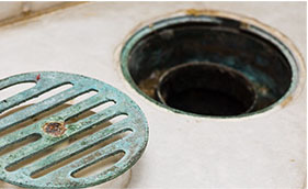 Maintain your drains